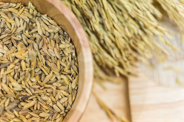 稲種子、木製のテーブル背景に水稲生稲種子。