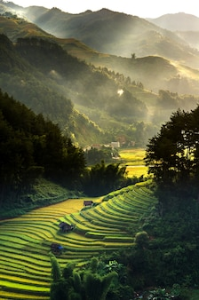 Rice terraced fields on mu cang chai district, yenbai province, northwest vietnam