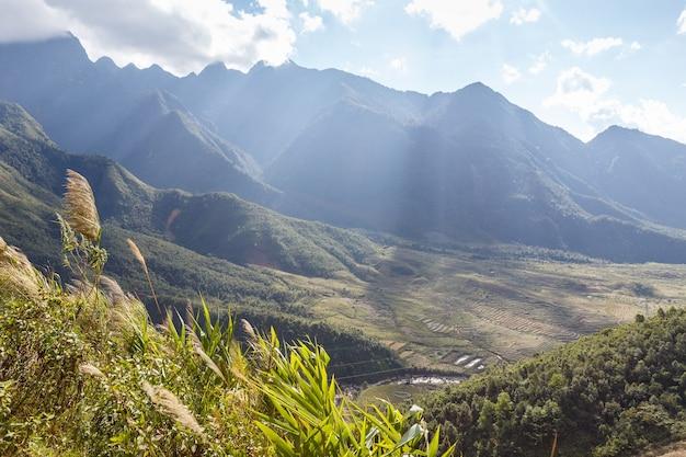 Рисовые террасы на склоне горы в лучах солнечного света вьетнам