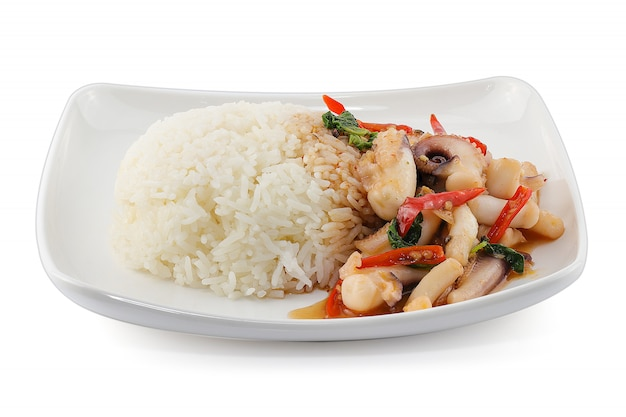 Rice topped with stir-fried squid and basil isolated on white background