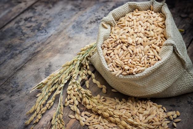 가방과 스파이크 쌀에 생 쌀된 쌀 프리미엄 사진