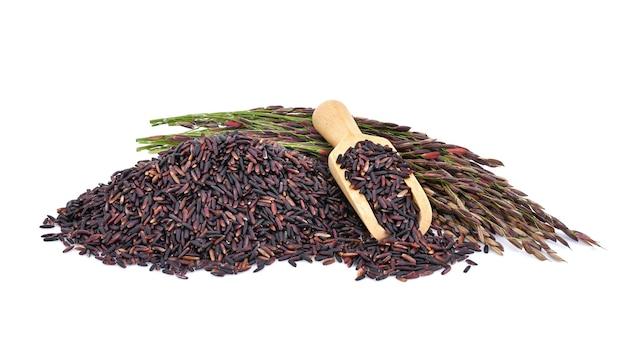 Riceberry 쌀 흰색 배경에 고립입니다.