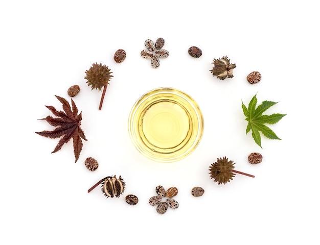 Ricinus communisまたはヒマシ油、緑の葉、種子および油が白で分離されました。上面図、フラットレイ。