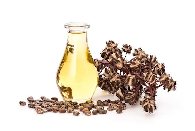 Ricinus communisまたはヒマシ油、種子、および白で分離された油。