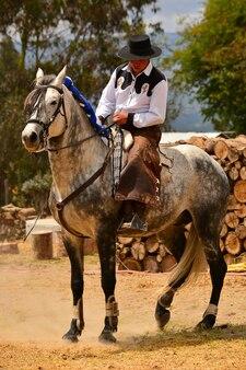 Rider in dressage