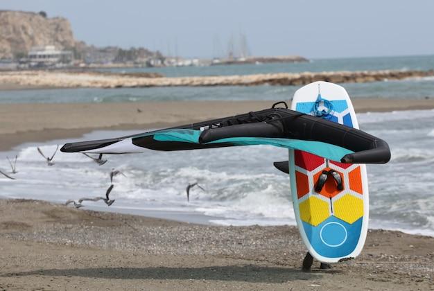 ライダーは、フォイルボードのコメット ボードと水中翼船でビーチを歩く