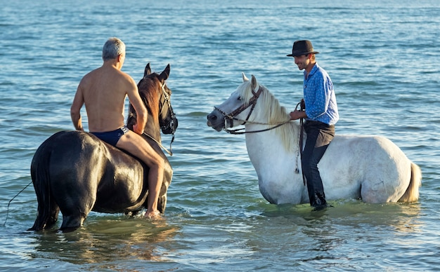 Riders and horses in the sea