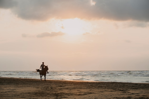夕日のビーチで馬に乗る