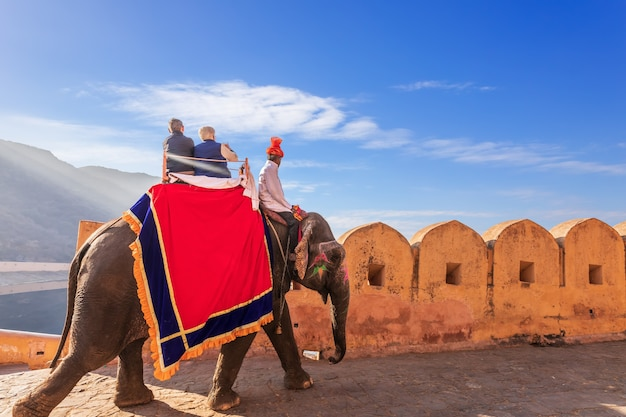Riding on elephats, famous tourist attraction in amber fort of jaipur, india.