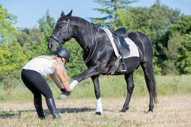乗馬の女の子と馬