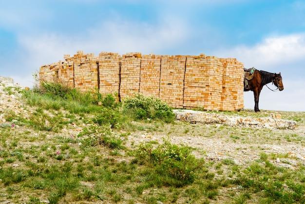 Andreevka orenburg 마을 근처 chasovnaya 산 꼭대기 벽돌 더미 근처에서 말을 타고