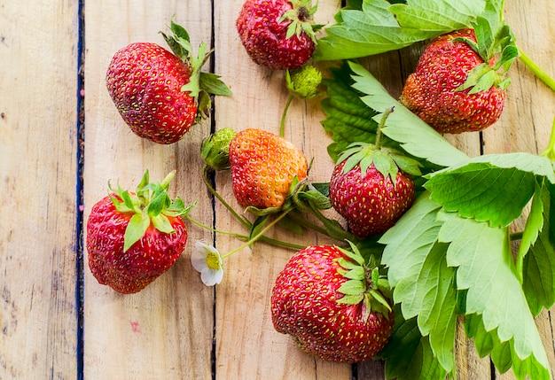 나무 표면에 익고 신선한 딸기