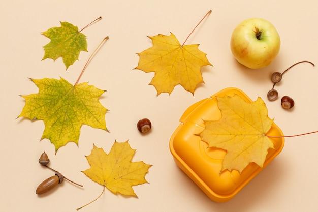熟したリンゴ、プラスチック製のお弁当箱、乾燥した黄色のカエデの葉、ベージュの背景にドングリ。上面図。