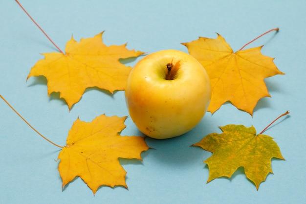 Спелое яблоко и сухие желтые кленовые листья на синем фоне. вид сверху.