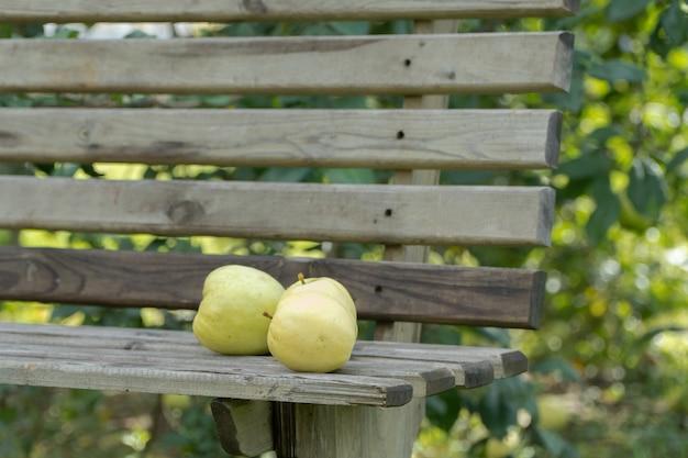 Спелые яблоки на скамейке в саду, крупным планом