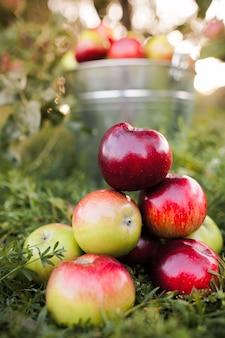 Спелые яблоки на зеленой лужайке