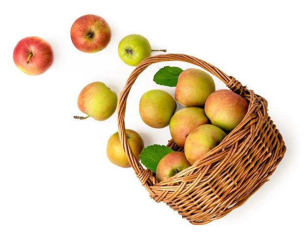 熟したリンゴが白い背景のバスケットからこぼれました。上からの眺め。