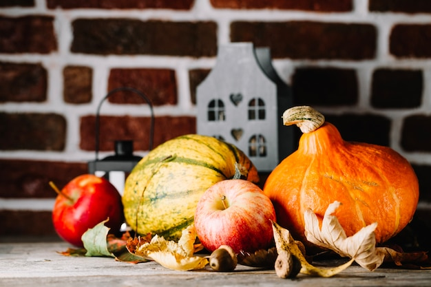 Ripe autumnal vegetables in arrangement