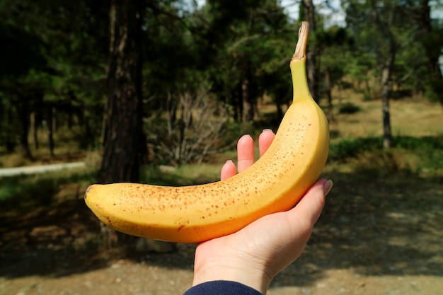 Ripe banana with brown spots on its skin in woman's hand against blurry forest