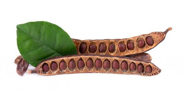 熟したイナゴマメの鞘と白で隔離される豆