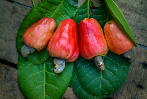 Ripe cashew nuts on green leaves
