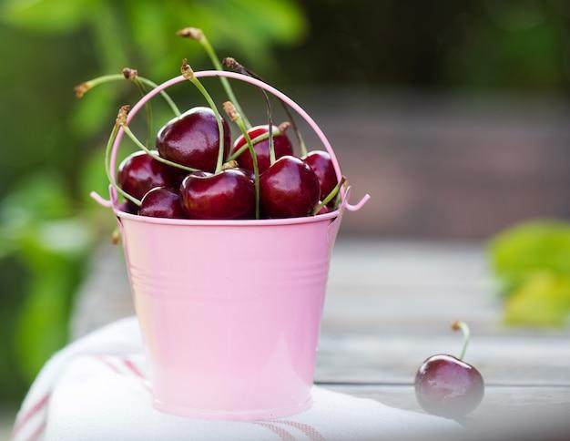 Спелые вишни в металлическом розовом ведре в зеленом саду с копией пространства