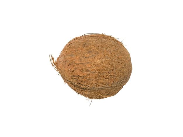 Изолированный спелый кокос. тропический фрукт.