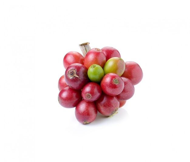 Ripe coffee beans on white space