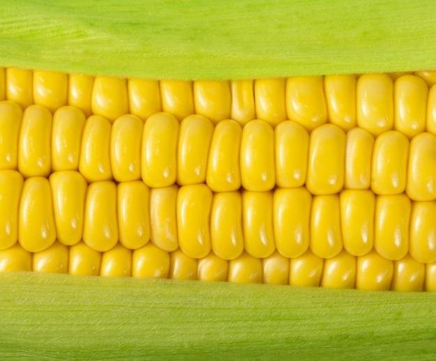 熟したトウモロコシの穂軸