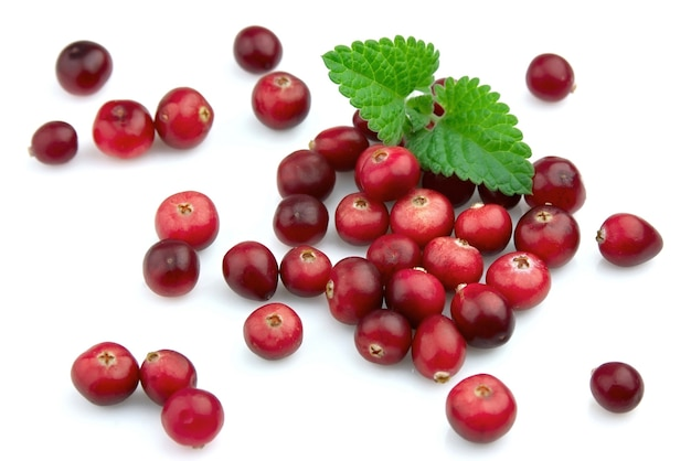 Ripe cranberry with a mint on a white background