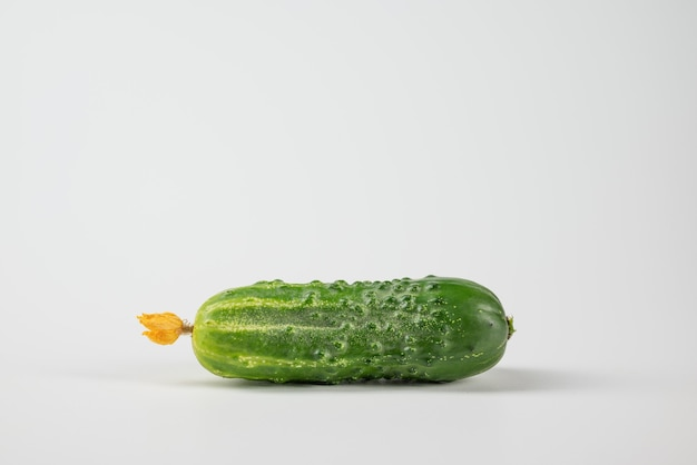 Ripe cucumber with flower on a white background