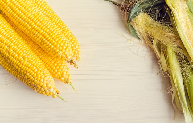 Ripe ears of corn on a background