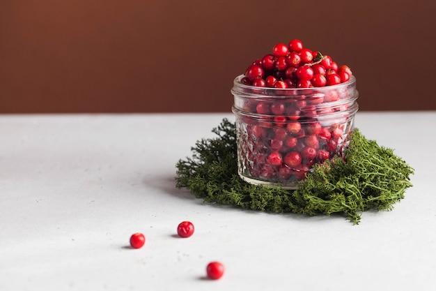 이끼에 투명 유리 항아리에 익은 신선한 크랜베리. 음식 사진 트렌드 .. 가을 열매