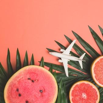 熟したフルーツとおもちゃの飛行機