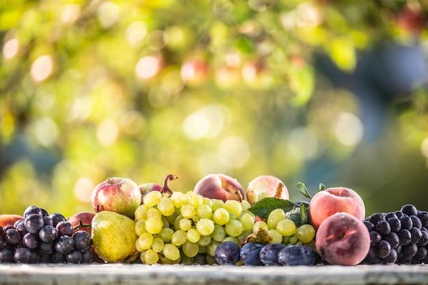 Спелые плоды лежат в ряд на садовом столе. красивое боке садовых деревьев как фон.