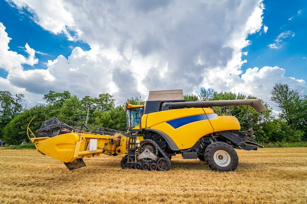 Ripe harvest concept.yellow combine. crop panorama. cereal or wheat gathering. heavy machinery. blue sky above field.