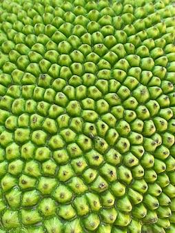 익은 jackfruits 질감 배경