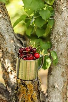 素朴なスタイルの庭の木の枝に金属製のマグカップで熟したジューシーなサクランボ