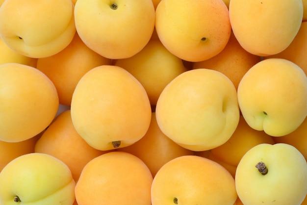 Ripe juicy orange apricots isolated on white background.