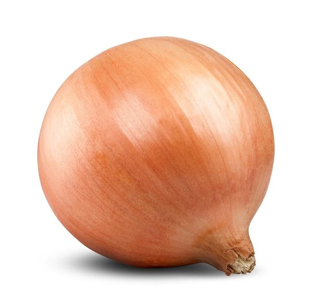 Ripe onion on white