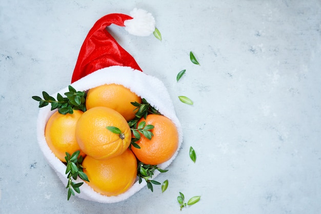 Ripe oranges in the hat of santa claus with boxwood plant on a blue background