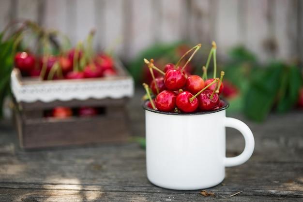 녹색 단풍 정원 자연 표면에 빈티지 에나멜 머그잔에 익은 유기농 갓 고른 달콤한 체리