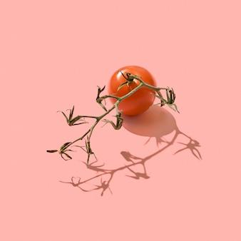 茎の熟した有機トマトは、2019年のリビングコーラルパントンの色の背景に影の反射と空間のコピーで提示されました。健康的なダイエット食品。上面図