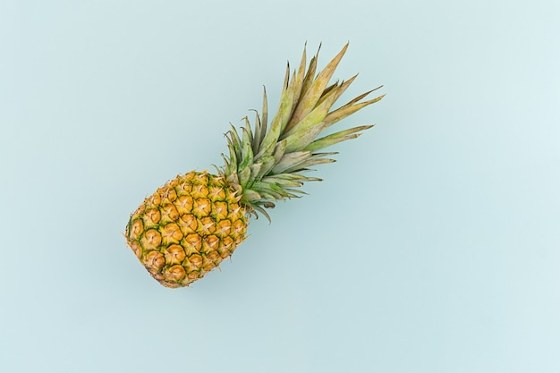 Ripe pineapple on blue background in minimalism style