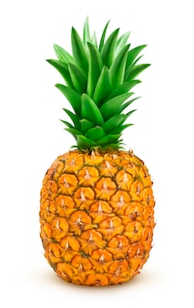 Ripe pineapple isolated