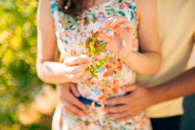 자연에 손에 잘 익은 석류. 몬테네그로의 과일