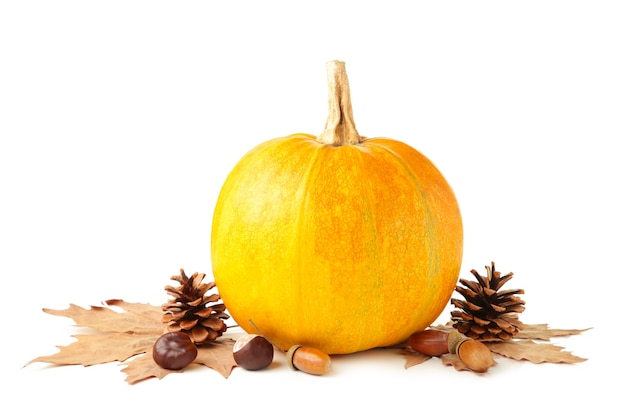 Ripe pumpkin and autumn leaves isolated on white background. top view