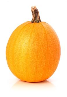 Ripe pumpkin vegetable isolated on white