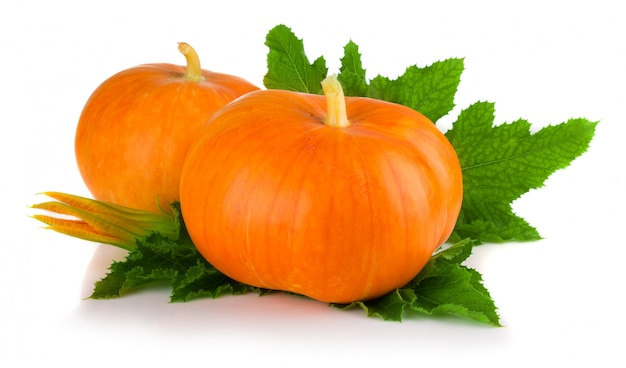 Ripe pumpkin vegetables with green leaves and blossom isolated