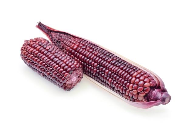 分離された熟した紫色のトウモロコシ分離株